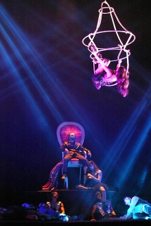 obra la gata circo 060